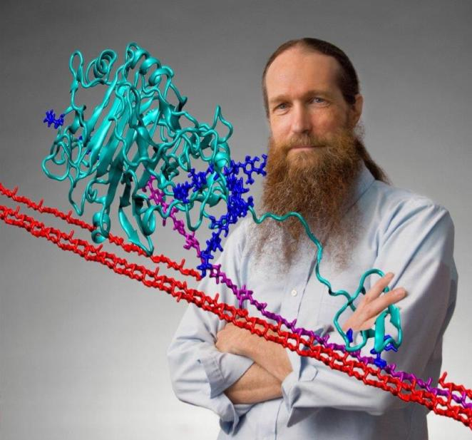 Michael Crowley, a senior scientist with the Chemical and Biosciences Center at NREL, created an animated model of Cel7A, which is nature's primary enzyme for decaying plants. Visualizing the enzyme's process could help scientists bioengineer a version that accelerates the cellulosic ethanol process. (Photo by Pat Corkery/courtesy of NREL).