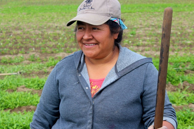 Originally from Mexico, Nelida Martinez labored as a farmworker for several years before launching her own operation at Viva Farms in Washington. (Photo by Cole Allen)
